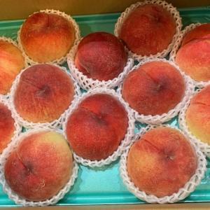 果物ノルマと宿題と闘う我が家 【ふるさと納税返礼品の果物が一気に届きすぎた件】