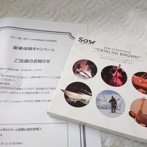 【大物当選+2件】豪華体験Sow EXPERIENCE BROWN♡チョロQとサンプル!