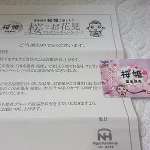 【当選1件】桜姫QUOカード1000円分♡グリーティング切手購入と、LOFTでシール購入!