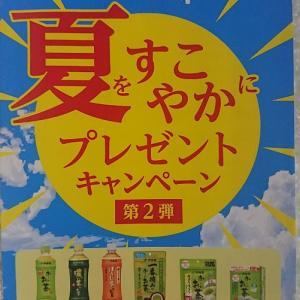 【懸賞情報】伊藤園♡お~いお茶!夏をすこやかにプレゼントキャンペーン!