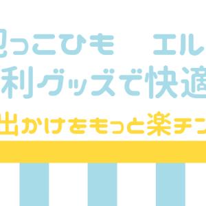【決定版】抱っこ紐(エルゴ)の便利グッズ!お出かけをもっと楽チンに!