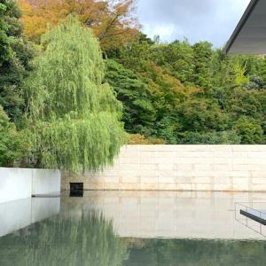 水鏡の庭で水面を見ながら思索する!「鈴木大拙館」