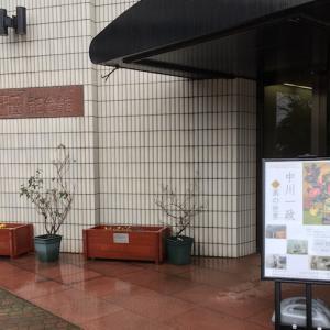 「松任中川一政記念美術館」で見た多岐にわたる分野の作品から学んだこと。