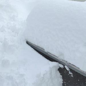 雪慣れしていない石川移住者、初めての大雪を体験中