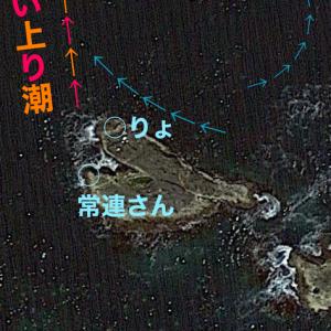 【フカセ釣り】『名磯ドウネ』は今日も裏切らない 和歌山県潮岬地区うりた渡船 2020年8月23日後編