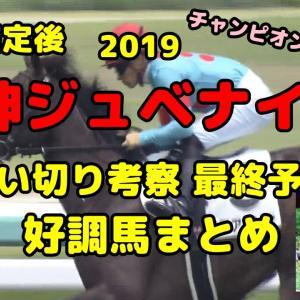 本予想【2019阪神JF】追い切りタイム評価 私の見方まとめ