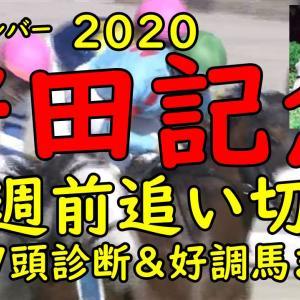 【安田記念2020】1週前追い切り 全17頭評価&好調馬まとめ