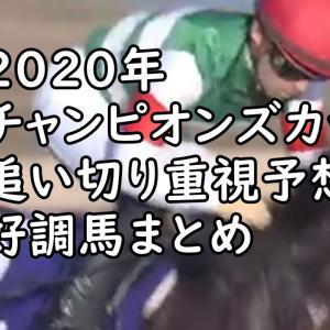【チャンピオンズC2020 予想】最終追い切り考察&好調馬まとめ