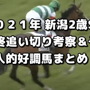 【新潟2歳S 2021 予想】最終追い切り評価&好調馬まとめ