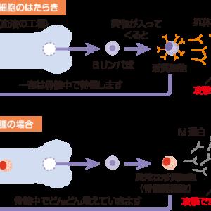 宮川花子、危険な状態だった 多発性骨髄腫を公表