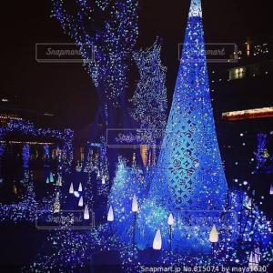 クリスマスツリーを見に行きたい