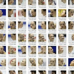 Subsequent Face Recognition   その後の顔認識