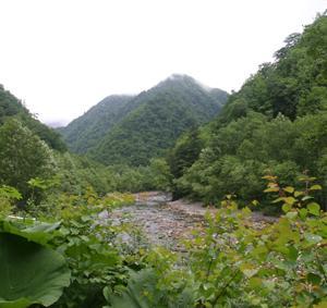 もう一度行きたい、札内川上流部