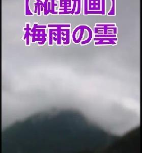 スマホ向け縦型動画