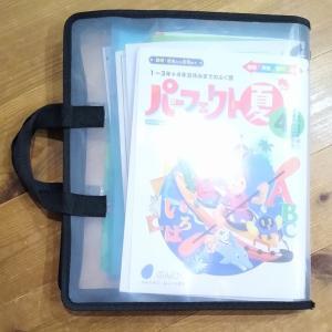 【セリア】一緒に使う物はまとめて。持ち手付きファイルケースで持ち運びもラクラク♪