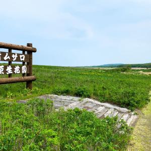 オムサロ原生花園