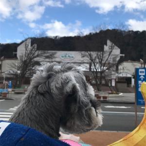 【犬OK!】東武ワールドスクエアに行かなきゃ損!損!🚙