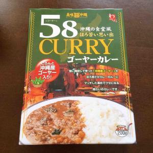 家カレーを紹介「美味沖縄 58(ゴーヤー)カレー」意外と爽やかでマイルド♪食べやすいゴーヤーカレー