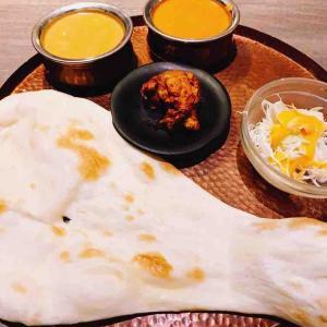 【ナン好き必見‼】インド料理の概念を変えた店に行ってみた♪(BINDI汐留店)