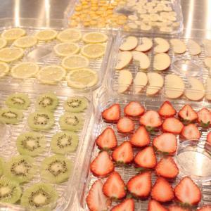 【ドライフルーツメーカー】で作るおすすめ果物はこれ!食材別 before→afterまとめ※随時更新中