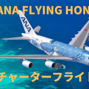 ANA FLYING HONUチャーターフライト