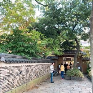 【福岡観光】楽水園②秋の楽水園へ紅葉を見に!住吉神社にお礼もね。