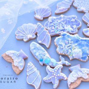 見るだけで涼しくなる海のクッキー