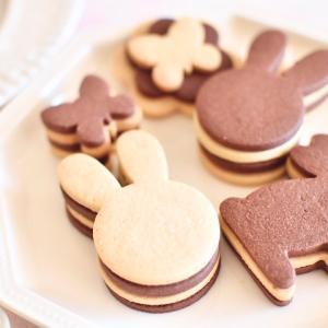 パリッ!サクッ!アイシングクッキーの好きな食感が出せるクッキー