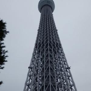 東京スカイツリー(東京都内4)