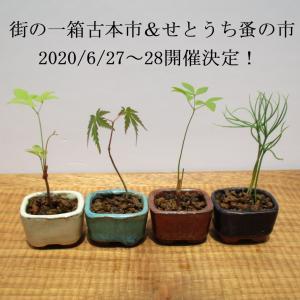街の一箱古本市&せとうち蚤の市6/27~28開催決定!