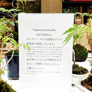 丸亀町グリーンマーケット2020/8/30無事終了しました!