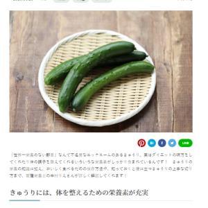 【仕事実績】小学館kufura「「きゅうり」にはどんな栄養があるの?保存方法から切り方まで」