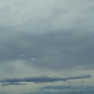 雨降らず・・・(身近な風景)