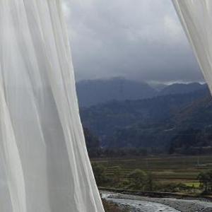 大きな窓・・・(身近な風景)