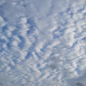 世間話と空と雲と・・・(身近な風景)