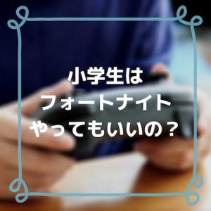 小学生のフォートナイト問題【個人情報・課金・暴言】