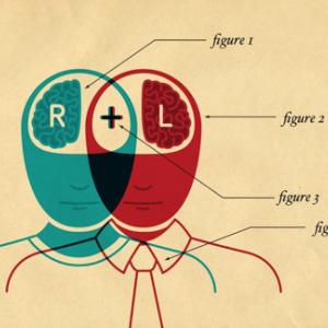男性脳、女性脳の傾向。最新研究結果