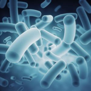 科学的根拠のない空間除菌「クレベリン」が売れてしまうことを懸念。そもそも人間は菌やウイルスだらけ。