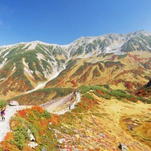 立山黒部アルペンルート、紅葉と雲海のコラボは今だけ!