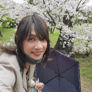 【誕生月シリーズ①】雨でも満開の桜はよろし…