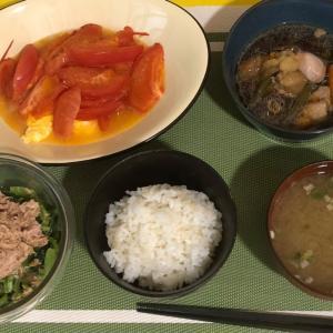 トマト料理5日目