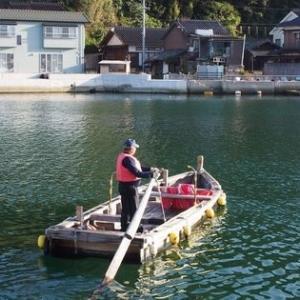 鶴江の渡し 手漕ぎの渡し舟でのんびり水上散歩(山口県萩市)