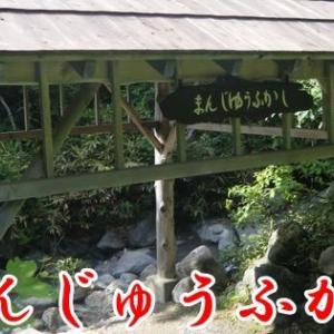 「まんじゅうふかし」で温まり、地球のパワーを感じよう(青森県青森市)