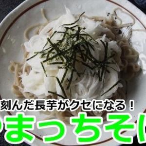 唐沢そば集落で長芋入りのやまっちそばを食べてみた(山法師@長野県山形村)
