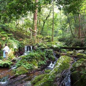 瓜割の滝は夏に行きたい名水スポット!くずまんじゅうもおススメ!(福井県若狭町)