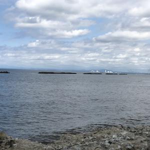 【初体験】北海道の夏は超快適で、まるで天国!