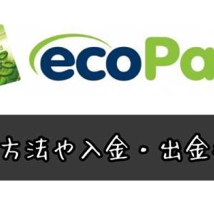 エコペイズ(ecoPayz)の登録手順、入金出金方法を解説