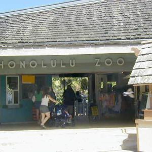 ホノルル動物園が3ヶ月ぶりに再開