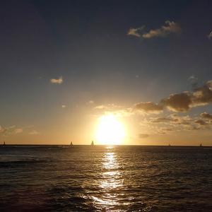 6月の国内ハワイ訪問者は2桁増で好調だが。。