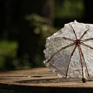 40代女性に人気の100%遮光日傘4種ご紹介です